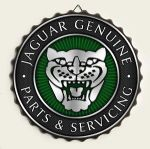 Julian Ferraro Jaguar | Salisbury